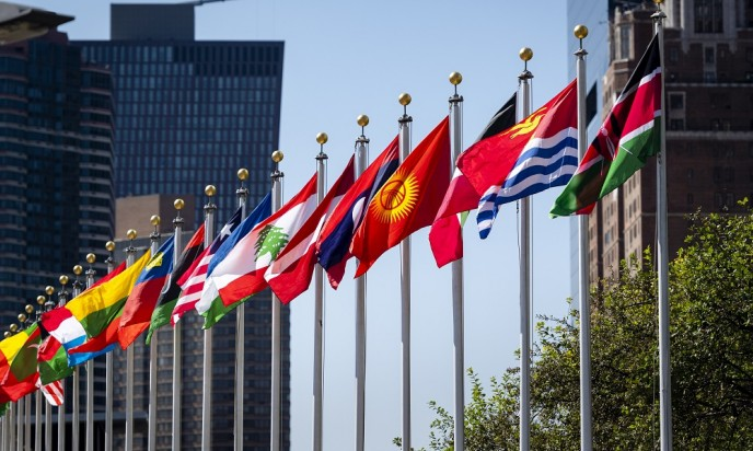 The organizational structure of the United Nations